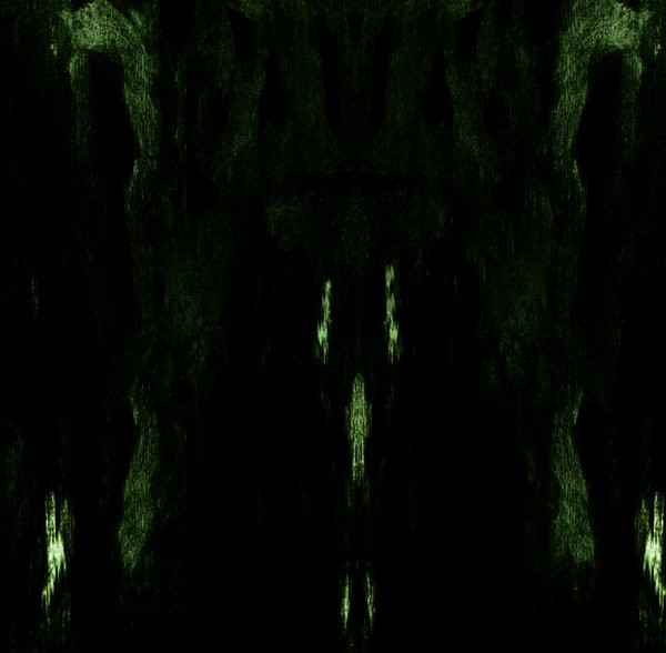 Impetuous Ritual - Unholy Congregation Of Hypocritical Ambivalence - 2014