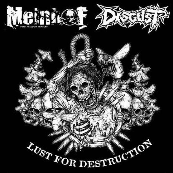 Meinhof, Disgust - Lust For Destruction - 2008