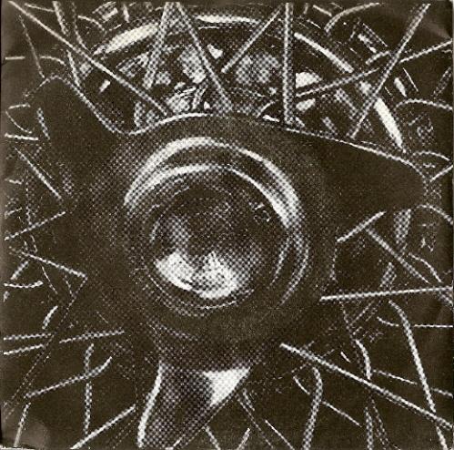 Dryrot - Shay 1990