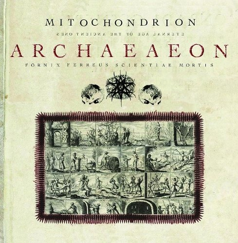 Mitochondrion - Archaeaeon - 2008