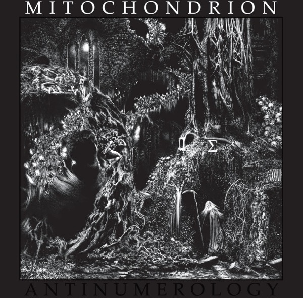 Mitochondrion - Antinumerology - 2013