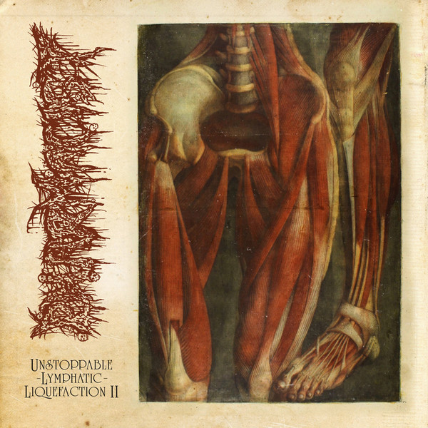 Pharmacist - Unstoppable Lymphatic Liquefaction EP - 2021